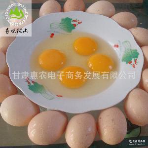 农家散养新鲜正宗土鸡蛋 厂家直销 别称 养生佳品 柴鸡蛋30枚包邮