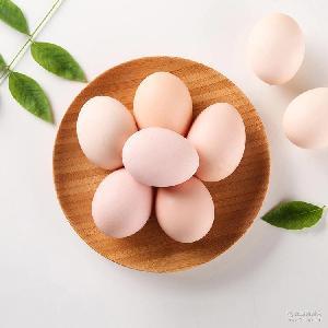 土特产 山林散养正宗农家有机果园 禽蛋 土鸡蛋 散养土鸡蛋25枚装