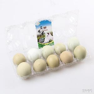 康平时宜兴特产 乌鸡蛋 厂家直销 农家散养土鸡蛋
