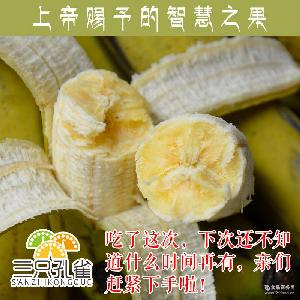 不催熟 三只孔雀 自然成熟的香蕉 云南特色香蕉 不打药 幼时味道