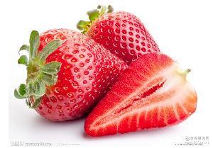 草莓苗经销 个头大甜草莓经销 销售有机无公害草莓 草莓价格