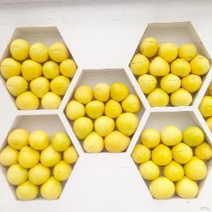 批发新鲜水红心柚子红肉蜜柚10斤纸盒精装(4个) 一件代发包邮
