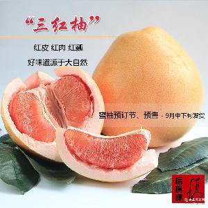 预售 新品 三红柚子 预订 平和特产 生鲜水果 平和蜜柚 产地直销