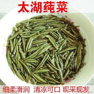新鲜莼菜 苏州太湖莼菜