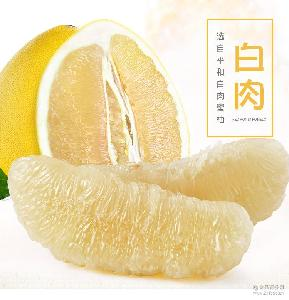 蜜柚之乡福建平和蜜柚白肉蜜柚 新鲜蜜柚 新鲜蜜柚产地直销