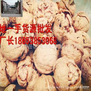 每包150斤-145新货自产自销野生原味坚果薄皮核桃批发
