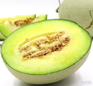 山东特产海阳网纹瓜密瓜香甜多汁无添加自然熟绿色有机产地直供