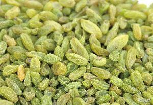 葡萄干批 无核白葡萄干 新疆特产 特级 无籽绿提子干散装 葡萄干