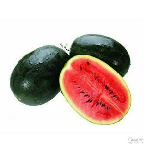 果园采摘包邮 热带水果天然绿色黑美人西瓜批发供应 新鲜水果西瓜