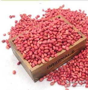 农家自产红皮花生米生新小粒生花生仁 红衣花生有机250g(半斤)