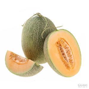 新疆特产正宗吐鲁番哈密瓜味甜瓜大 量大价优 批发原产地发货