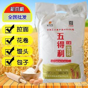 厂家批发五得利面粉七星雪花小麦粉2.5kg手工刀削面拉面礼品团购
