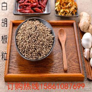 高品质各种规格白胡椒粒 优质调味料批发 羽越供应直销白胡椒粒