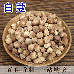火锅烹饪 调味品 2017年精选白蔻优质白豆蔻香料卤料