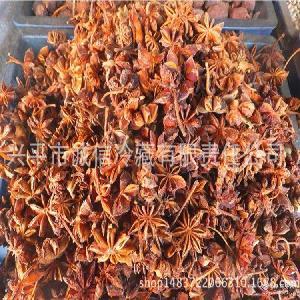 精选优质八角 火锅烧烤卤煮 调味香料 散装批发烹饪佐料调味品