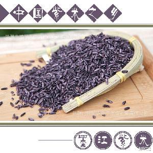云南特产墨江紫米精品紫糯米大米500g厂家直供北纬同步
