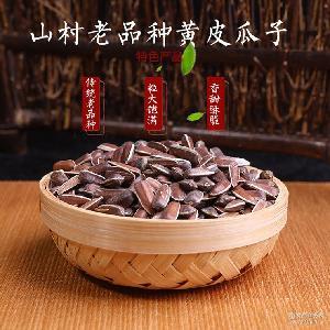 农家自产黄皮瓜子 云南本地传统物种原产地批发零食干果葵花子 香