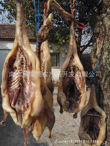绿色手工腌制咸鸭 肉质鲜嫩农家自制肉制品 野生放养特产年货咸鸭