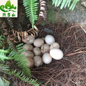 隐居山原生态土鸡蛋绿色天然特价*富硒农家土鸡蛋
