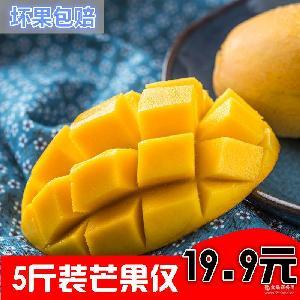 坏果包赔5斤装新鲜小芒果单果50-150g核小肉厚