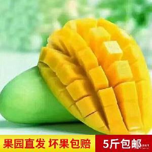越南进口新鲜水果香芒 绿色芒果5斤净果微商货源 果农代发 包邮