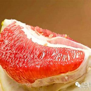 平和琯溪蜜柚红心柚子果园直发一件代发批发