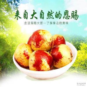 鲜冬枣陕西大荔百果王脆冬枣一级现货2斤装大果包邮支持一件代发
