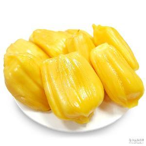 海南三亚特产菠萝蜜丰富弹性维生素口感纯正木菠萝22-25斤