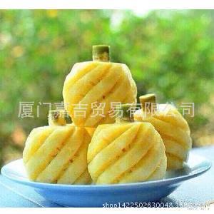 小菠萝 *最小的凤梨 新鲜保证 岛迷你小菠萝