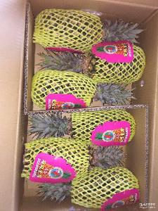 新鲜水果批发团购供应 热带水果特产 无眼有眼菠萝 凤梨