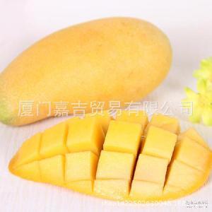 水仙芒 香甜多汁批发团购 芒果 美味水仙芒 新鲜水果