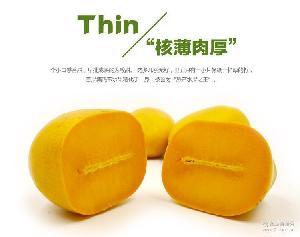 水仙芒 3斤4-6颗 小果 核薄肉厚甜 【新果源】海南芒果 包邮