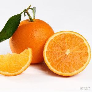 榨汁橙当季时令现摘5斤包 脐橙 誉福天下 秭归夏橙 新鲜水果橙子