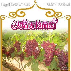 新疆葡萄火焰无核吐鲁番火焰山葡萄提子脆甜多汁新疆新鲜水果批发