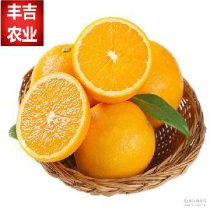 一件代发江西赣南脐橙新鲜水果批发时令水果寻乌橙子20斤一箱包邮