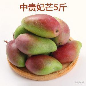 中贵妃红金龙芒果5斤装包邮 广西百色贵妃芒新鲜芒果水果