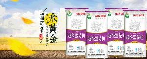 特价发酵类面粉 包子粉量大从优 馒头粉 规格齐全优级特卖