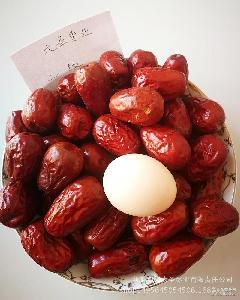 散装优质新疆红枣 红枣批发 树上自然晾干 和田2级骏枣和田大枣子