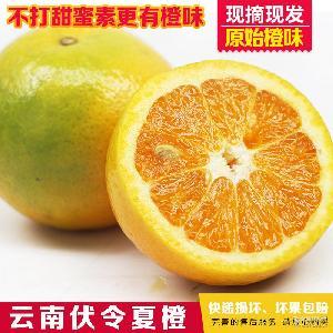 新鲜橙子 支持一件代 云南夏橙5斤装 除新疆西藏青海以外全包邮