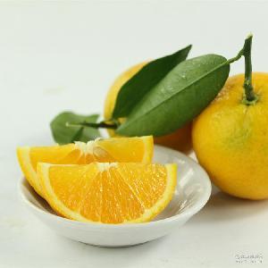 5斤装现摘发货 湖北秭归脐橙 新鲜水果橙子多汁夏橙 支持一件代发