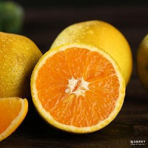 现摘现发秭归脐橙夏橙 酸甜可口时令孕妇水果橙子5斤