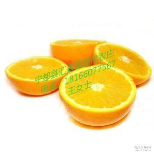 热销清火祛痘祛斑养颜香橙 新鲜脐橙果农产地直销一级有机甘橙子