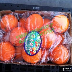 热销新鲜宁都脐橙 16斤礼品装橙子 江西特产 保健养颜高纤维水果