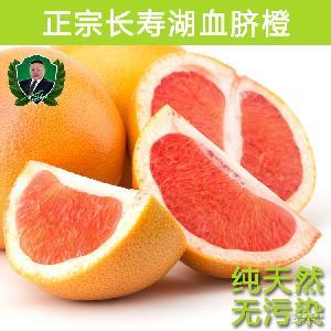 重庆特产红肉血橙水果新鲜塔罗科血橙红心新鲜水果批发橙子