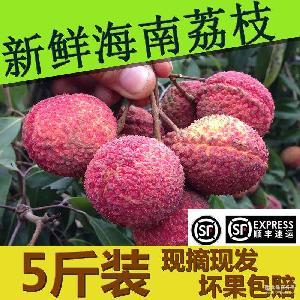 荔枝王 热带水果 5斤装 非妃子笑无核荔枝 海南荔枝 顺丰包邮