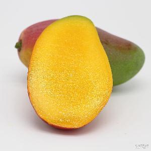 海南大贵妃芒 新鲜现摘 产地直发 热带时令红金龙 5斤装 包邮水果