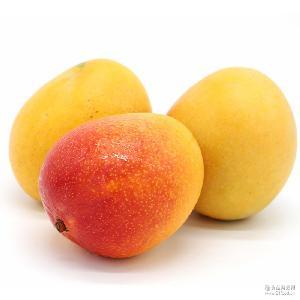 热带水果包邮 非大青芒 8斤装澳芒 进口芒果 批发代发 越南芒果
