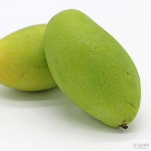 8斤装小青芒 越南芒果 应季时令热带水果代发 玉芒现货新鲜多汁
