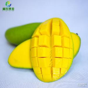 进口大芒果新鲜越南青芒优质青皮芒果酸甜水果5斤装一件代发芒果