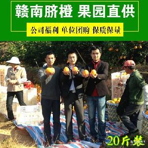 正宗江西赣南脐橙寻乌安远橙子果园直供产地直销批发一件代发20斤